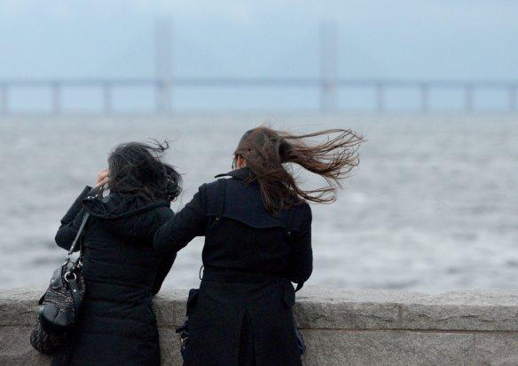 Annalkande storm. Foto: Johan Nilsson/TT.